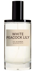 DS & Durga White Peacock Lily